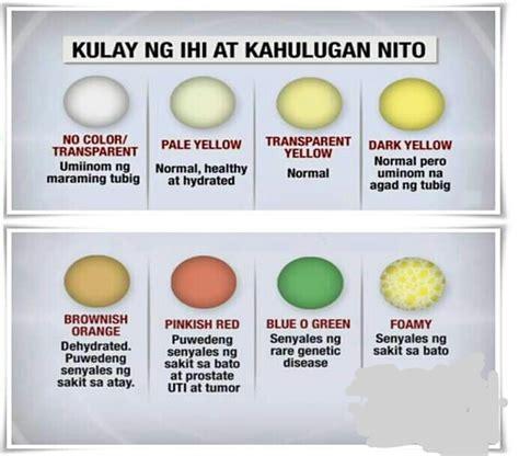 mga vitamin na dapat inumin para mabuntis picture 5