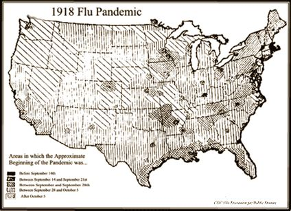 florida flu deaths 2014 picture 11