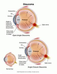 oclumed eye drops reviews picture 5