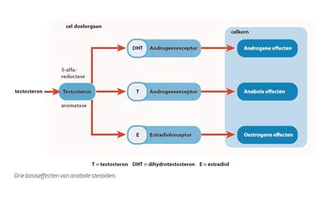 acne symptoms picture 11
