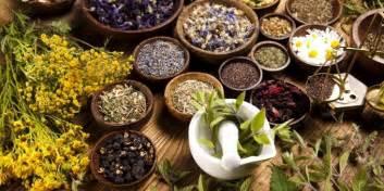 mx 3 herbal medicine picture 1