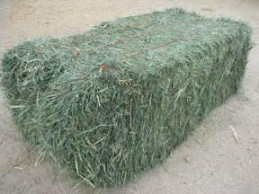 alfalfa price picture 3