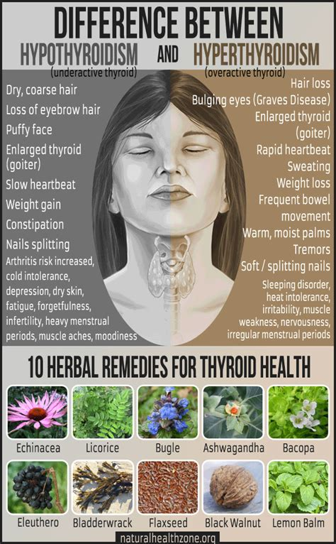 natural treatments an underactive thyroid picture 14
