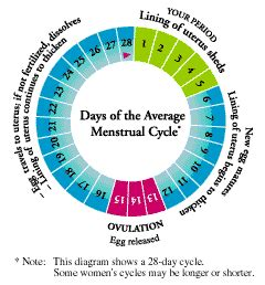men simulating monthly menstrual periods picture 3