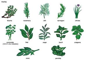 herbals that can be use for to do picture 7