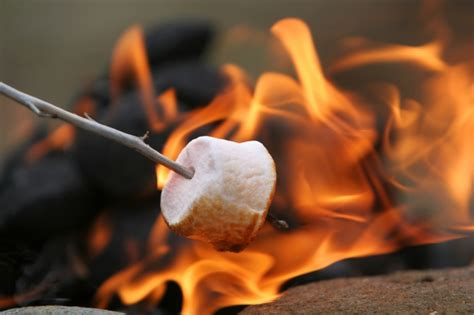 can marshmallows be toasted on the real flame picture 3