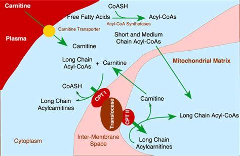 symptoms liver disease picture 1