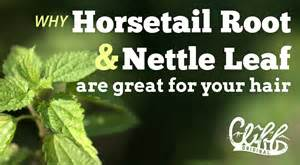 horsetail silica, does it help hair picture 10