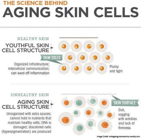 problems with aging skin picture 1