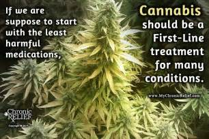 cannabis pain relief picture 7