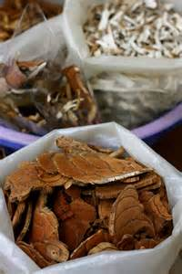 chinese herbal medicines cinnamon and peoria picture 1