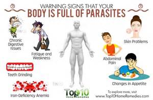 body cleanse parasites picture 2