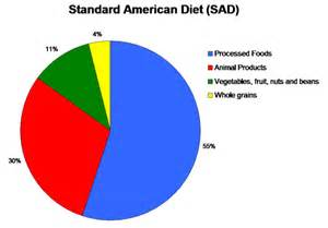 american diet picture 11