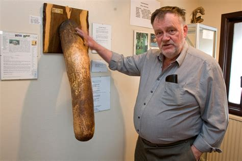 world largest penis picture 10
