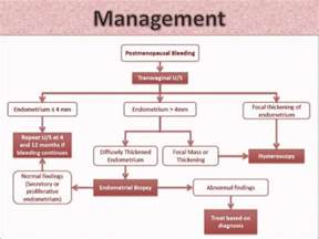 ano ang dydrogesterone picture 3