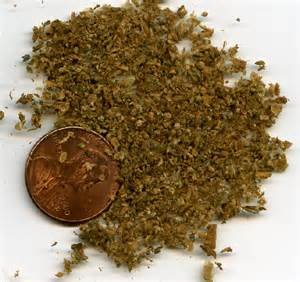 what does weed look like picture 7