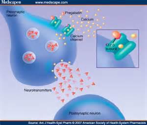neurontin adjuvant pain relief picture 10