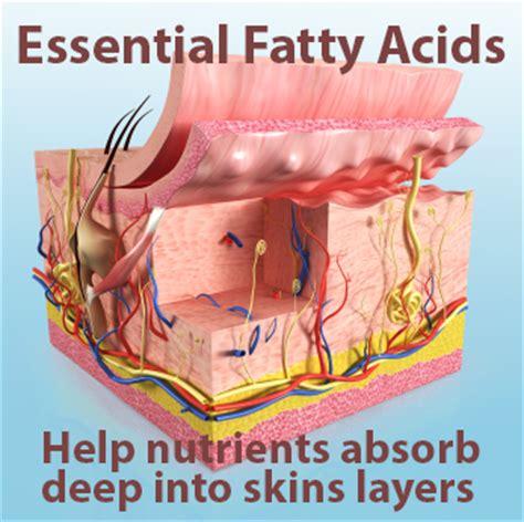 acne & essential fattty acids picture 7