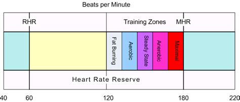 calculate fat burning heart rate picture 21