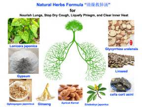 purchase herbal remedies picture 3