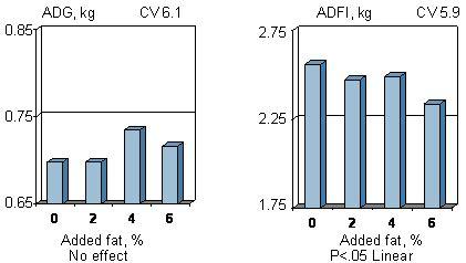 adding liquid fat to show pig diet picture 8