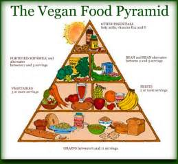 testosterone levels vegan diet picture 2