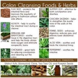 colon cleansing foods picture 6