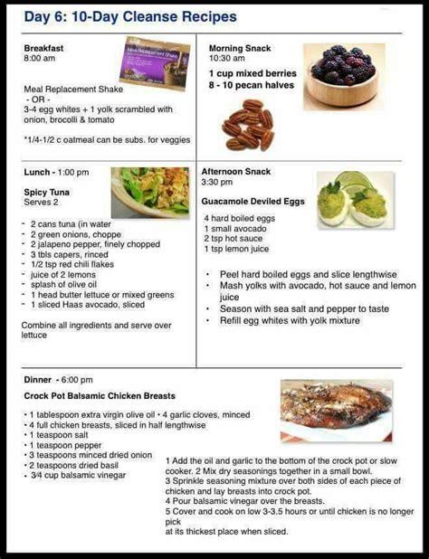 avacore diet picture 1