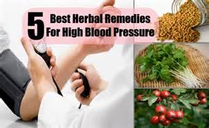 Remedies for hypertension and high blood pressure picture 12