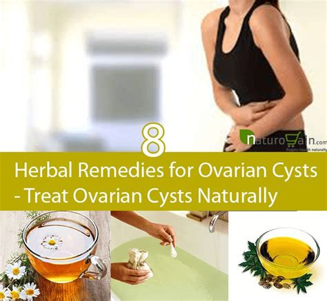 cysts on ovaries herbal products picture 1
