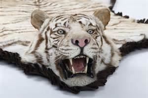 tiger skin rugs picture 6