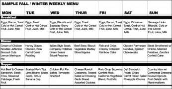 sample menu for th 3 hour diet picture 14