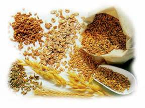 whole grains and fat burning picture 1