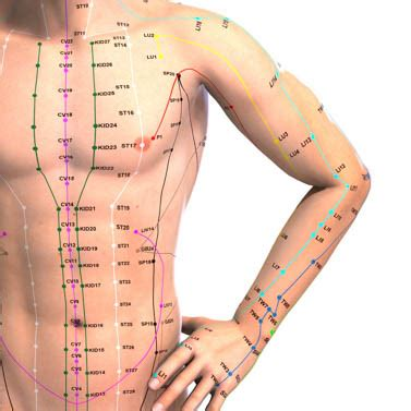 acupressure points pelvic pain picture 1