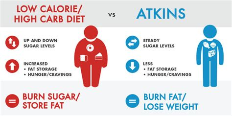 atkins diet and cholesterol picture 3