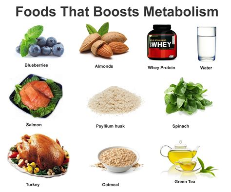 fat burning metabolism diet picture 13