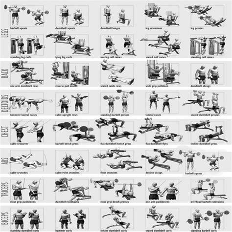 free weight loss programs picture 9
