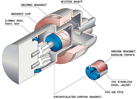 dr. showing how erection pump works picture 10