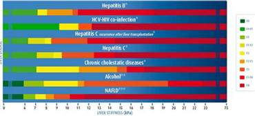 how reliable are the results of a liver picture 6