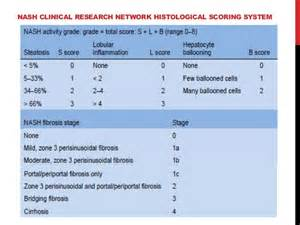fatty liver disease treatment picture 2