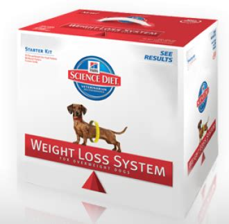 fast weight loss system picture 10