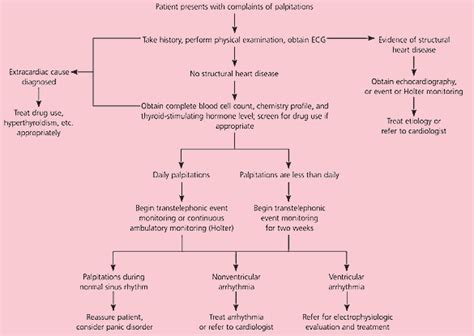 why do thyroid problems cause palpitations picture 3