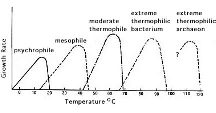 microbial growth occurred only at the temperatures picture 6