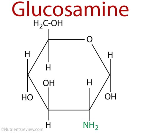 does glucosamine cause alopecia picture 17