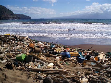 ocean debris picture 2