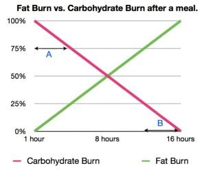 walgreens burn body fat picture 2