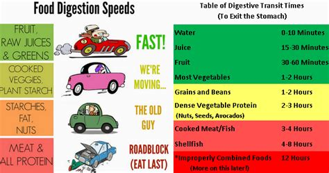 list of digestion time of foods picture 4
