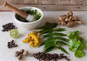 indian herbal medecine picture 2