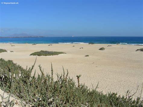 beach voyeurland picture 1