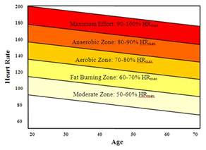 Heart rate fat burning zone picture 14